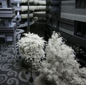 赤外線写真 (infrared Photography) : キャナルシティ博多