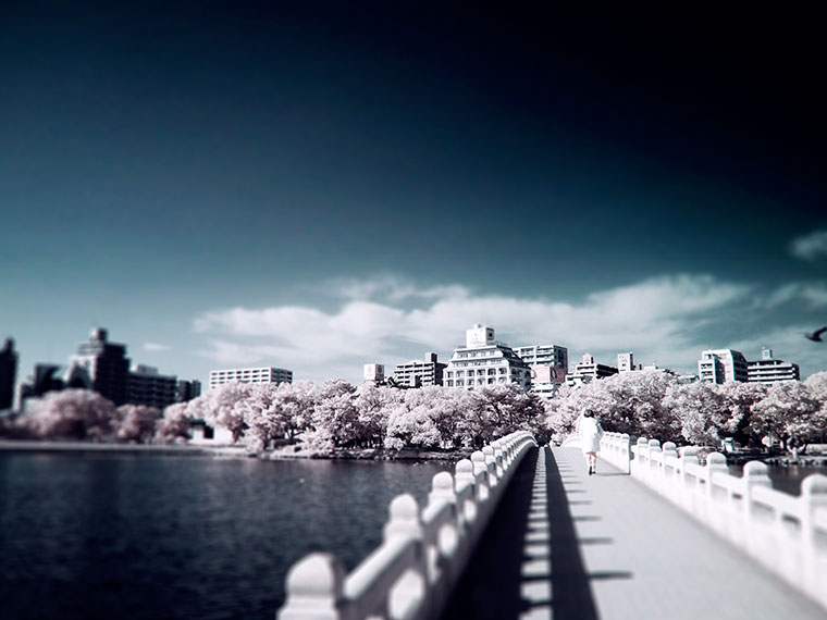 赤外線写真,Infrared Photography,大濠公園