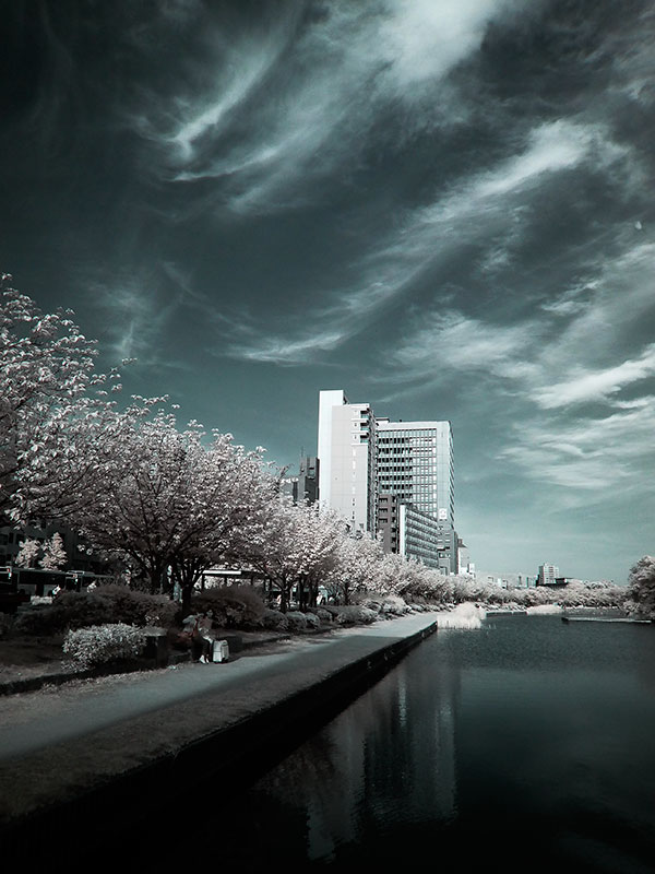 赤外線写真,Infrared Photography,sc72,偽色,false color