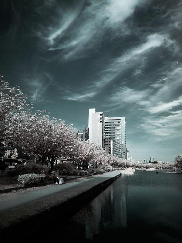 赤外線写真,Infrared Photography,sc72,偽色,false color