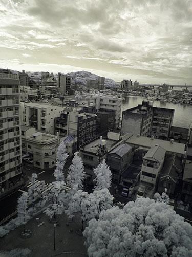 樹木の葉でホワイトバランスを調整して、同じ風景を撮影した
