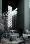赤外線写真 (infrared Photography) : 天神・FFG