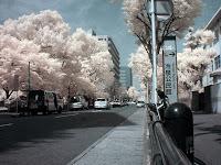 赤外線写真の冷泉公園 InfraRed Photography