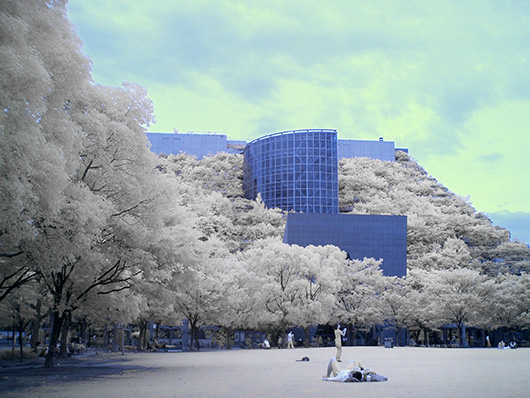 赤外線写真(InfraRed Photography)