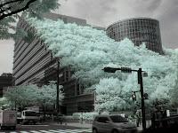 アクロス福岡の赤外線写真