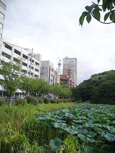 福岡地方裁判所の前